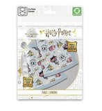 Harry Potter Hogwarts Express mondkapje 2-pack - filmspullen.nl