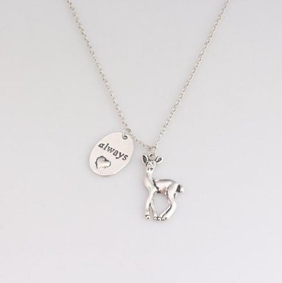 Harry Potter: Snape & Lily Always ketting