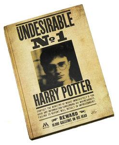 Harry Potter 3D notitieboek (Lenticular) - Undesirable No. 1 - Filmspullen.nl