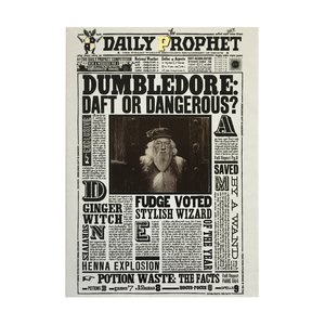Harry Potter 3D wenskaart - Dumbledore Draft or Dangerous - filmspullen.nl
